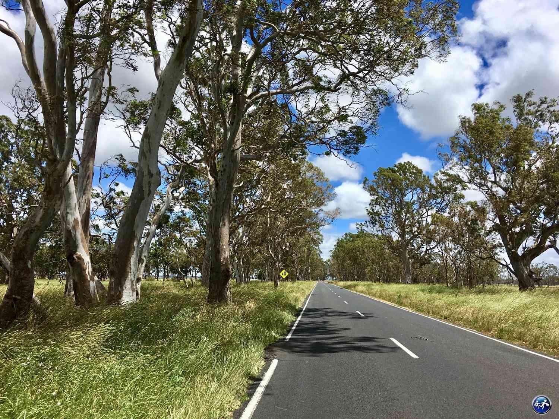 Conduire sur de très longues routes interminables en Australie
