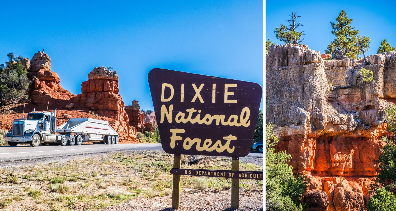 Arrivée sur la route 12 dans la Dixie National Forest
