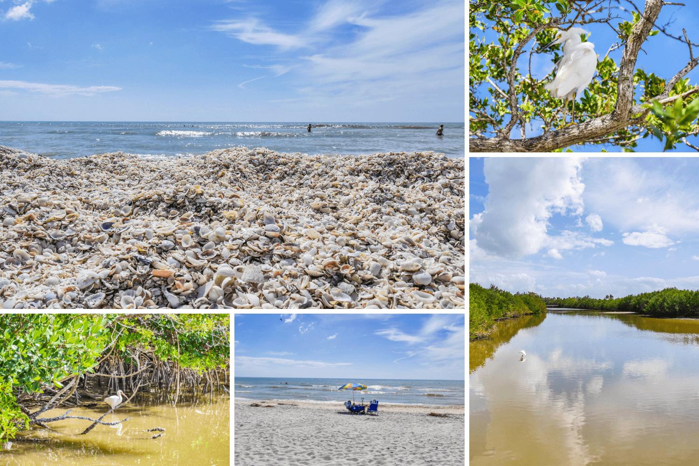 Visiter Sanibel Island en Floride