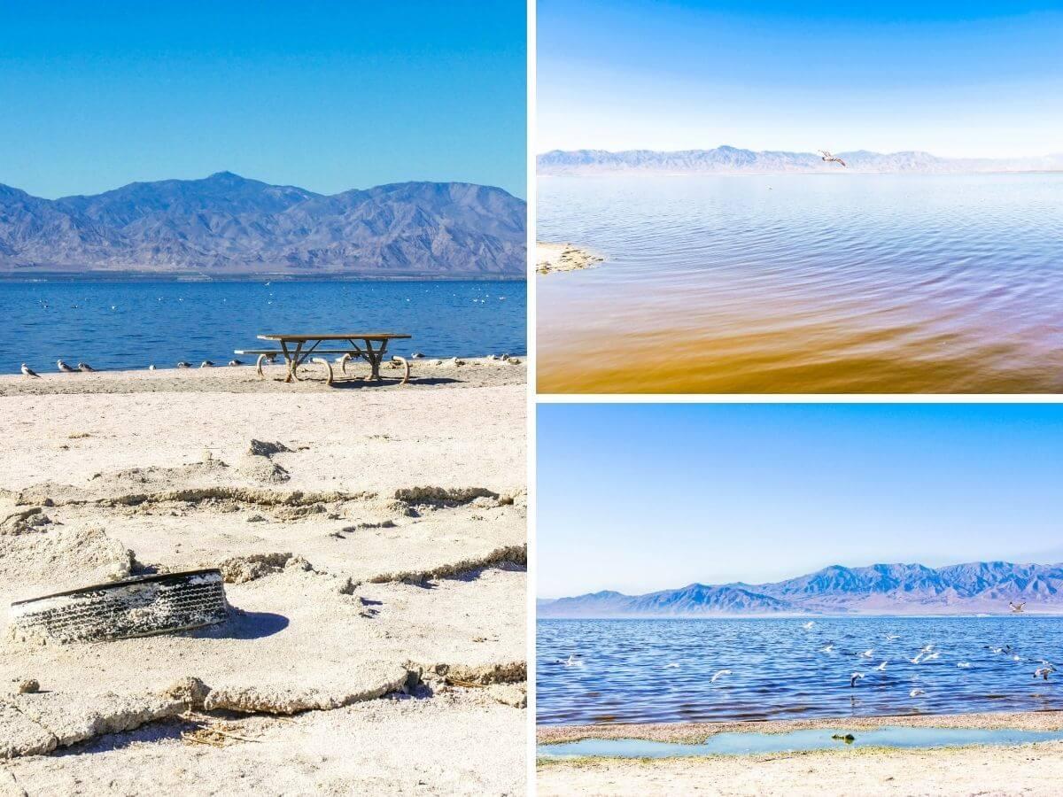 Désert californien de Salton Sea