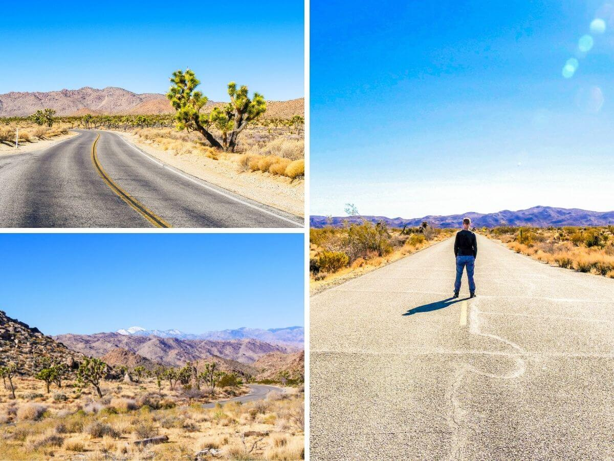 Route désert Joshua Tree Californie